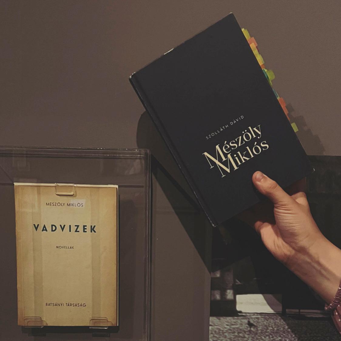 Szolláth Dávid Mészöly-monográfiája | avagy miért ne essünk neki magunktól életmű-olvasásoknak